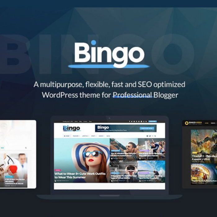 Bingo WordPress Theme
