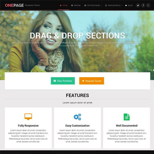OnePage WordPress Theme